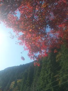青空の旅…シーズン2 <br />  京都編1